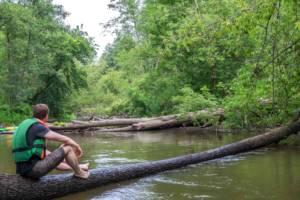 przeszkody na rzece Świder