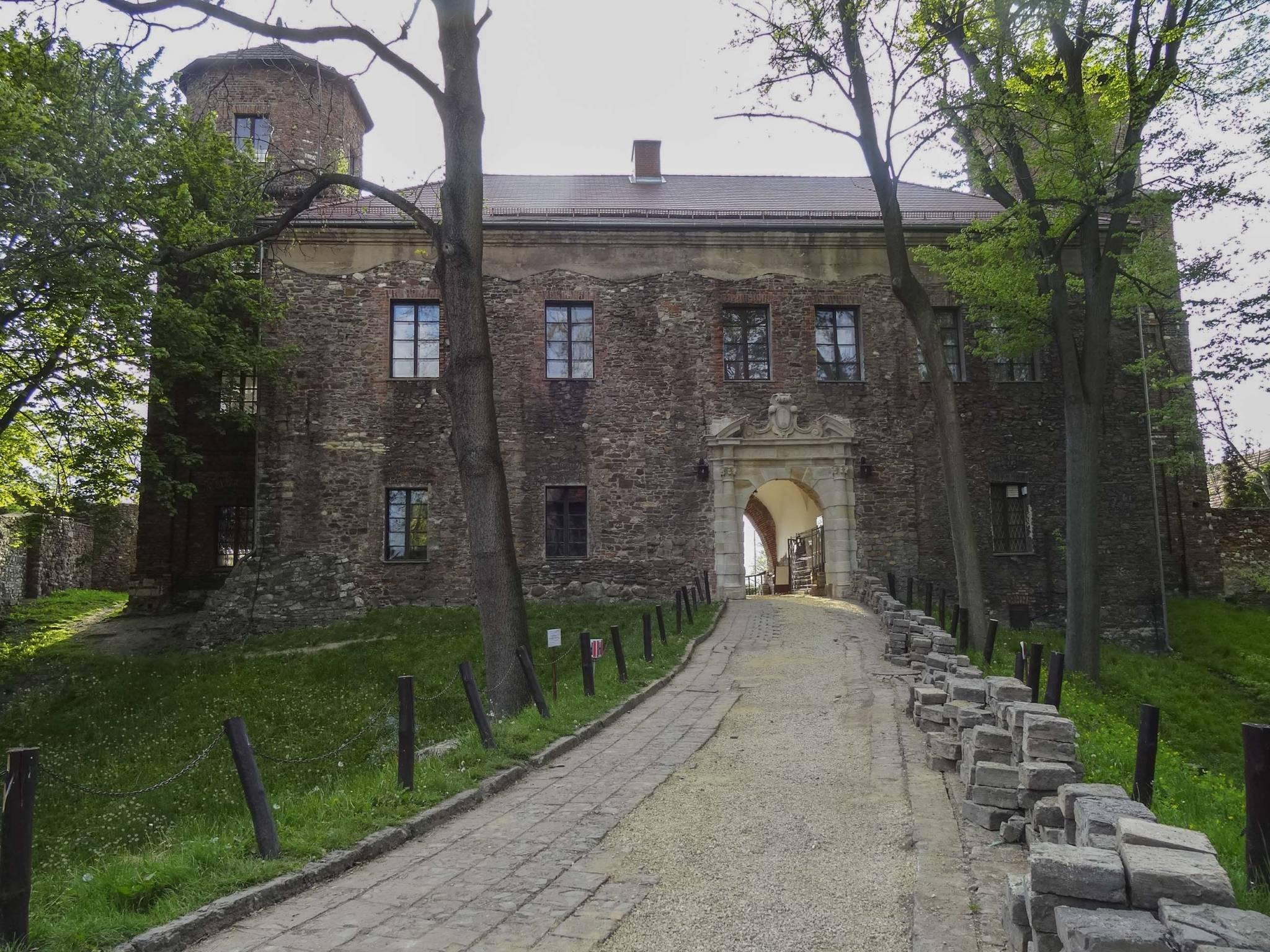 ZAMEK W TOSZKU-19