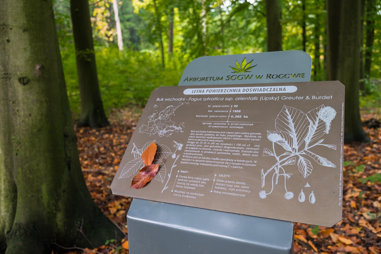 arboretum zdjecia -7
